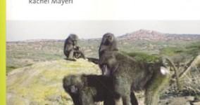 Primate Cinema catalogue