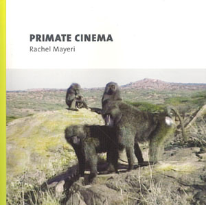 primate culture essay The first official use of the concept of culture in non human primates was observed in 1952 when stone handling was witnessed among japanese macaque the species, otherwise known as the snow monkey is a terrestrial primate that is native to japan.