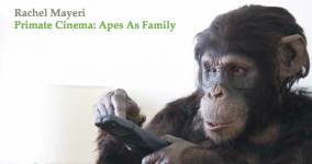 Arts Catalyst ebook on Apes as Family